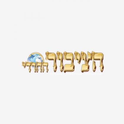 Haredi public